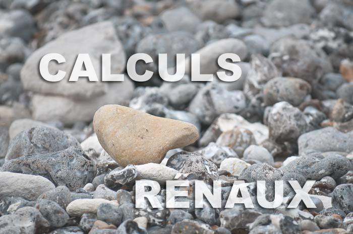 image calculs renaux